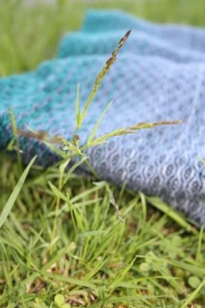 Gras im Vergleich zur Webung und Farbe