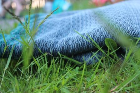 Detailansicht auf Gras