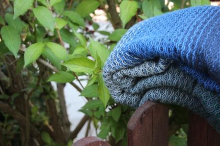Das Blau im Vergleich zum Grün eines Busches